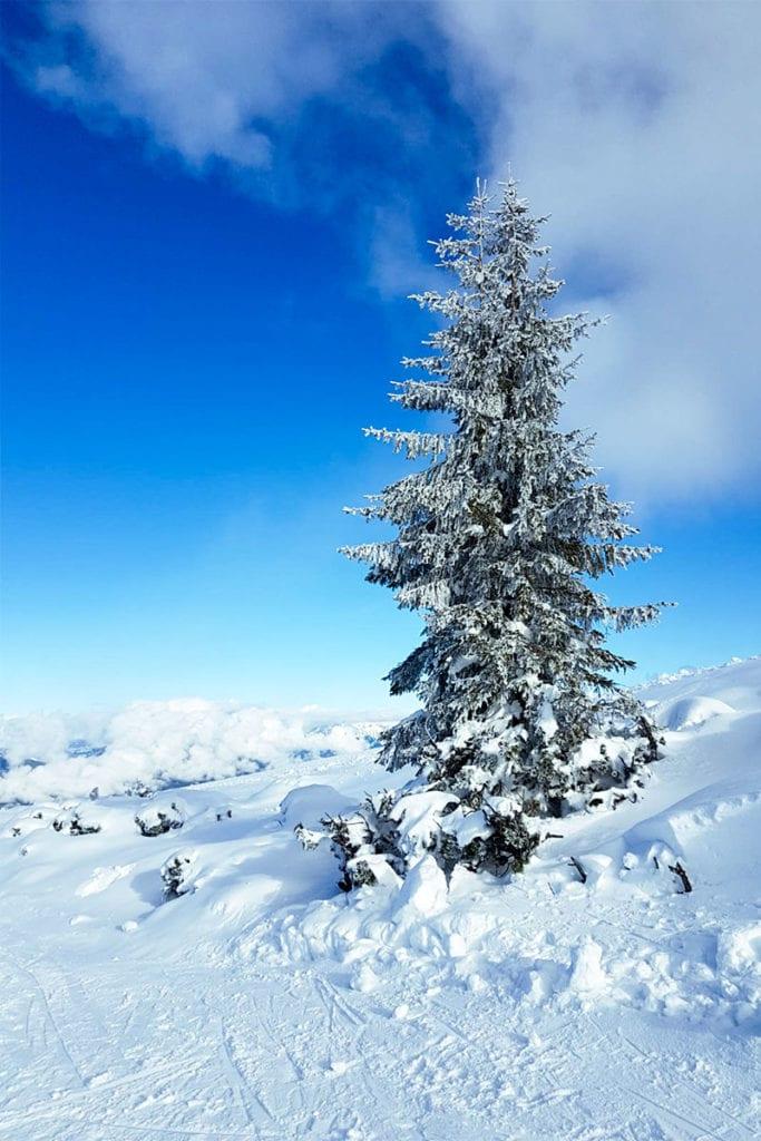 Winterurlaub in Flachau, Flachauer Bergkristall, Salzburger Land